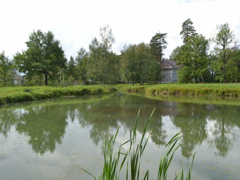 музей Суворова, пруд