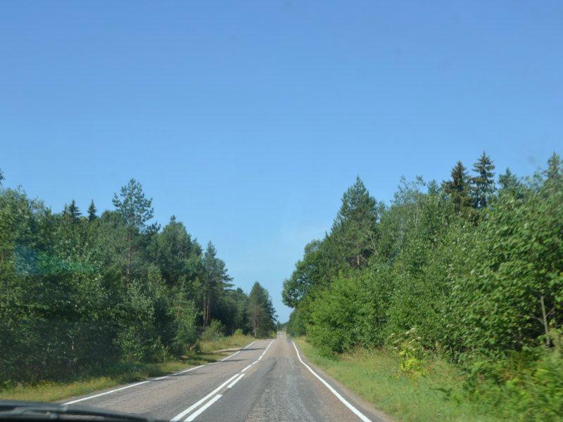 Дорога в Торковичи